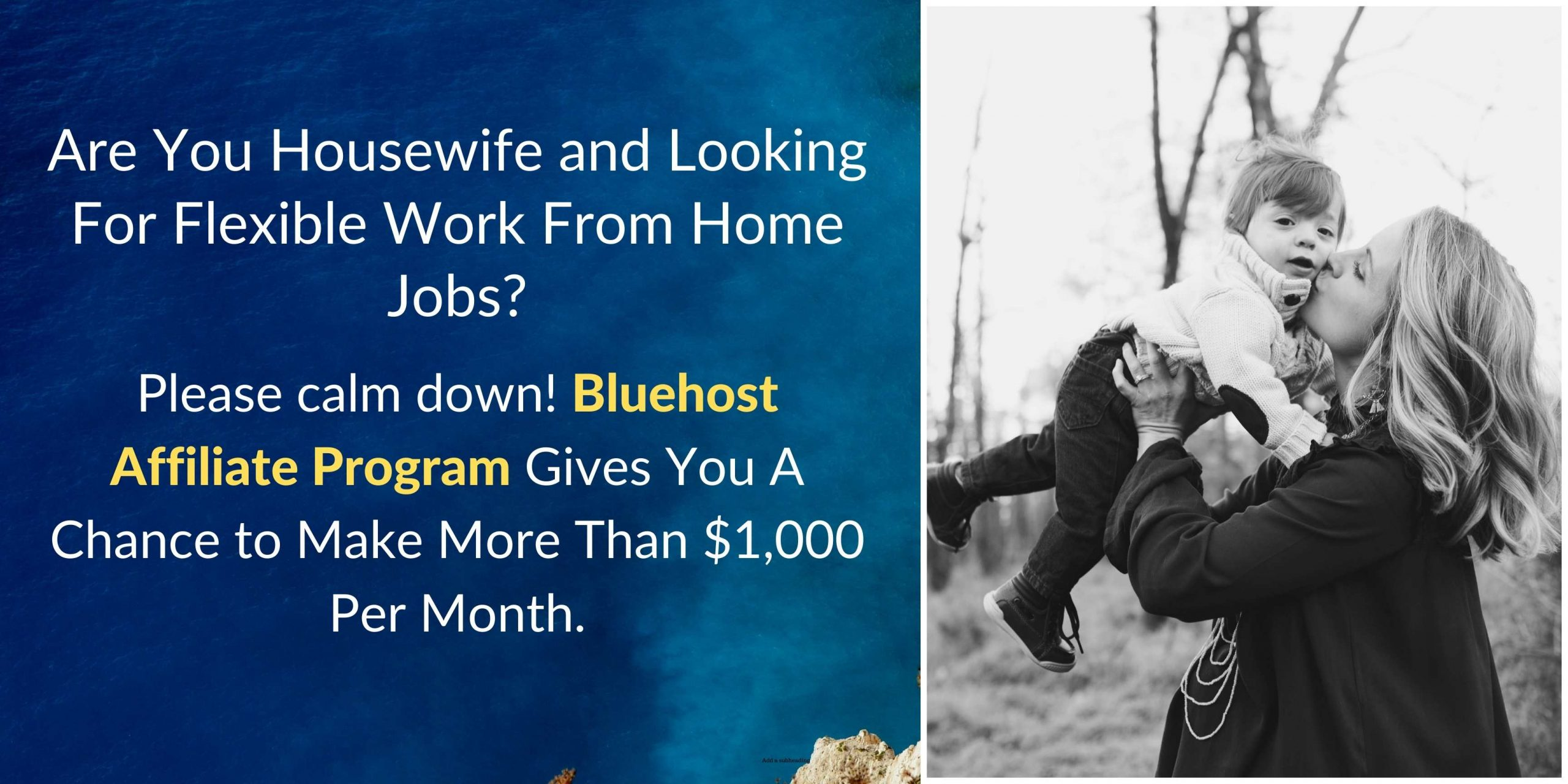 flexible work from home jobs for moms